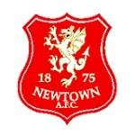Ньютаун - logo