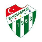 Бурсаспор - статистика Турция. Высшая лига 2011/2012
