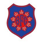Bonsucesso - logo