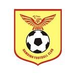 Намдинь - logo