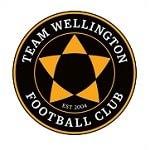 Тим Веллингтон - logo