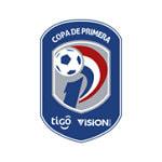 Парагвай. Высшая лига - logo