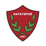 Хатайспор - logo