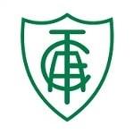 أمريكا مينييرو - logo