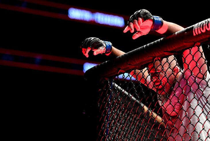 «Я старик, бить молодых нелегко». Тейшейра в 41 год зачистил дивизион UFC, установил рекорд по финишам и вышел на чемпионский бой