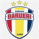 Гремио Баруэри - статистика Бразилия. Высшая лига 2010