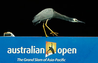 Australian Open, Виктор Троицки, видео, происшествия