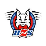 Молодежная сборная Словении по хоккею с шайбой