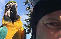 Микеле Скарпони, Астана, происшествия, велошоссе