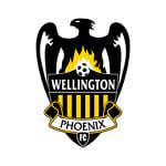 Веллингтон Феникс-2 - статистика Новая Зеландия. Высшая лига 2014/2015