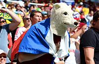 ФИФА, болельщики, чемпионат мира