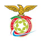 Хамм Бенфика - статистика Люксембург. Высшая лига 2007/2008