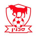 Бней-Сахнин - logo