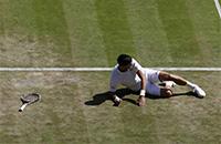 Почему поражение Джоковича – главная сенсация года