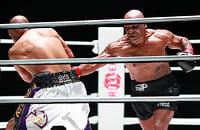 Майк Тайсон - Рой Джонс-младший, бокс, Рой Джонс-младший, Майк Тайсон, WBC