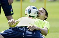 Златан Ибрагимович, Манчестер Юнайтед, сборная Швеции