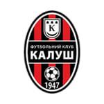 FC Kalush - logo