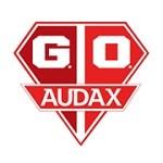 Gremio Osasco Audax SP - logo