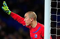 Эйдур Гудьонсен, Сборная Исландии по футболу, Евро-2016, Ханнес Халльдоурссон