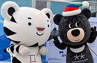 Пхенчхан-2018, Кубок мира