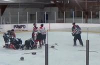 Тренер нокаутировал судью, ударившего игрока его команды