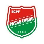 Пасу-Фунду