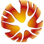 высшая лига Австралия
