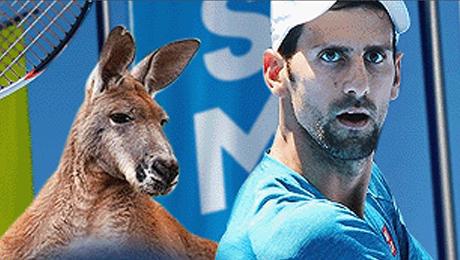 Смотрите решающие матчи Australian Open онлайн и абсолютно бесплатно