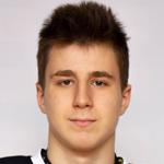 Владислав Залесинский