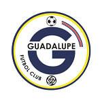 Guadalupe - logo