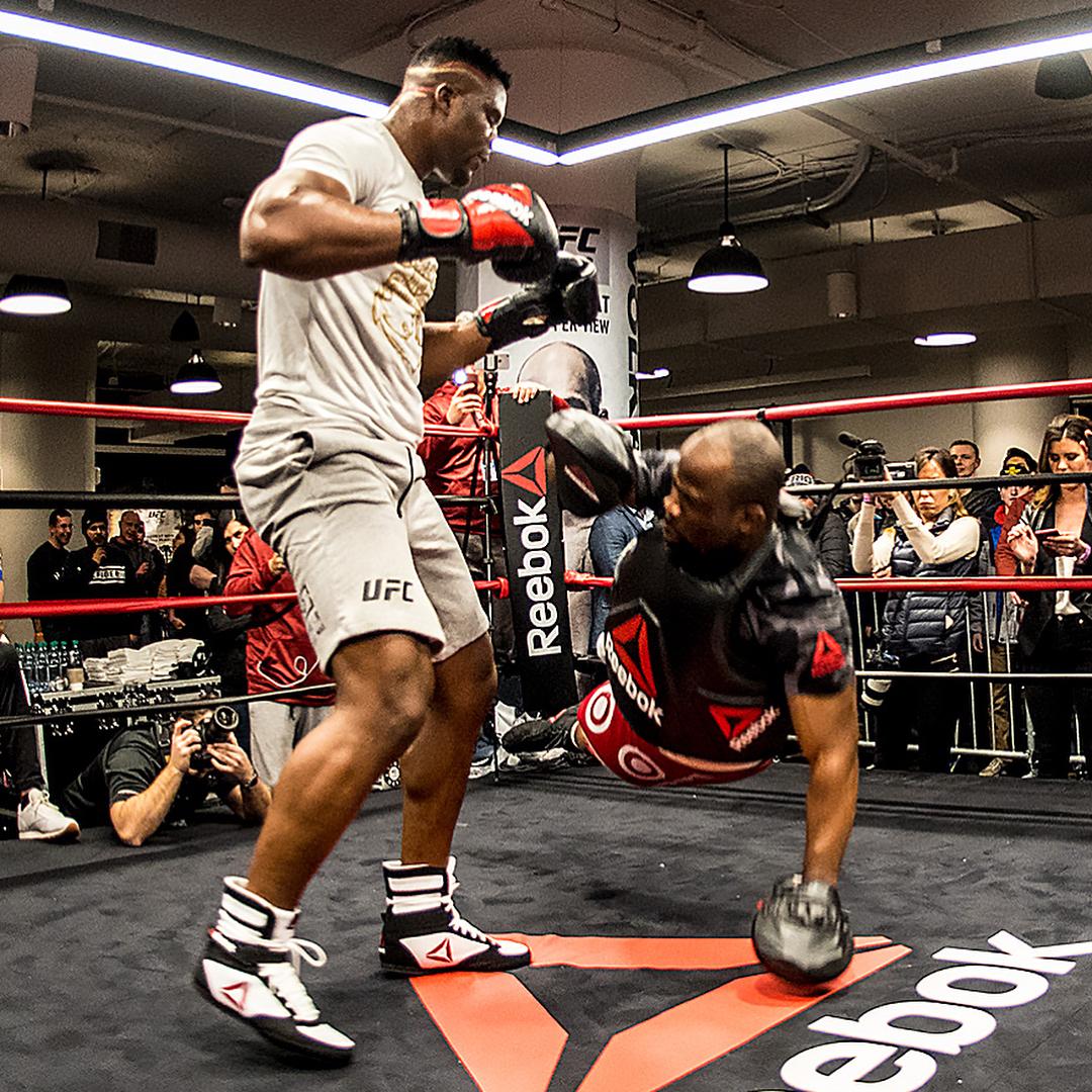 Стипе Миочич, UFC, Франсис Нганну