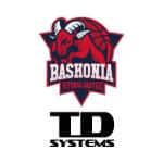 ТД Системс Баскония