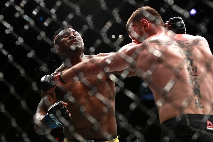 Нганну нокаутировал Миочича, Люке задушил Вудли и декласс соперника от брата Хабиба. Онлайн UFC 260