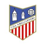 CD Artistico Navalcarnero - logo