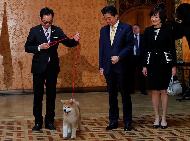 Японцы подарили Загитовой собаку. Такую же, как у Путина