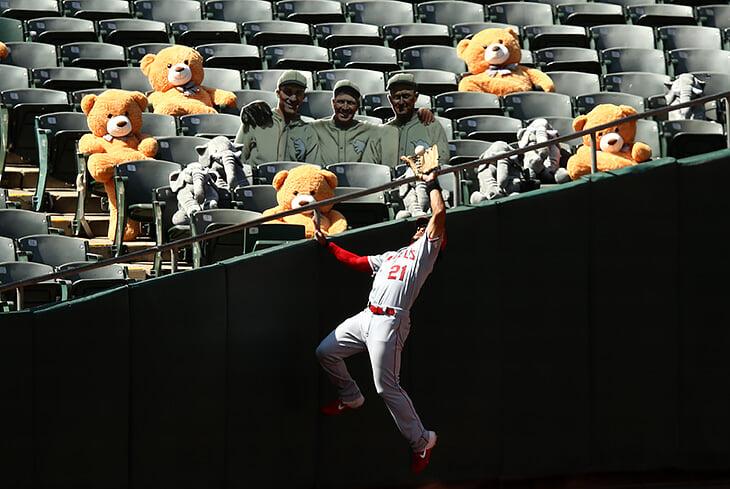 40 лучших спортивных фотографий 2020 года. И один скриншот