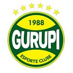 Гурупи