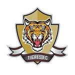 Тигрес де Соача - logo