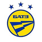 БАТЭ - статистика Лига чемпионов 2012/2013