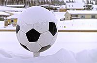 ЧМ-2018 FIFA, Сборная Исландии по футболу