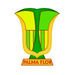 Атлетико Пальмафлор - logo