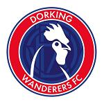Dorking Wanderers - logo