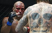 MMA, смешанные единоборства