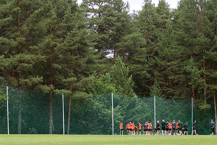 🌲 База «Урала» = красота. Только взгляните на этот живописнейший лес!