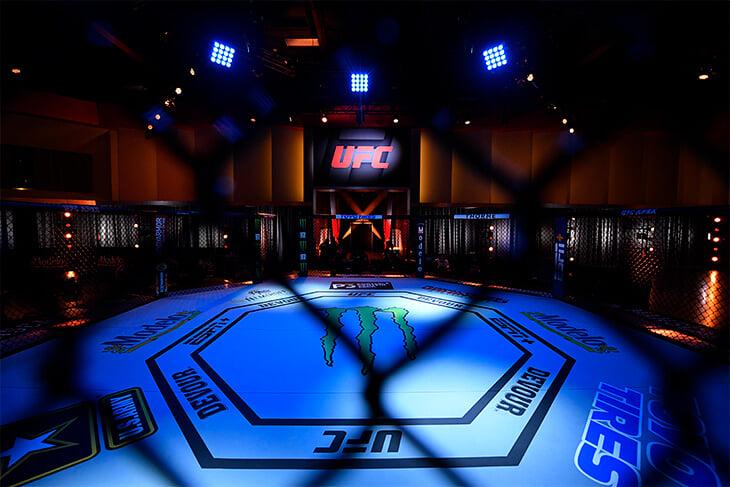 Бизнес-империя Серены Уильямс: доли в UFC и клубе НФЛ, 20 лет в индустрии моды. Доходы она не разглашает