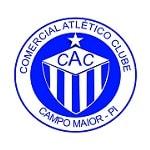 Comercial PI - logo