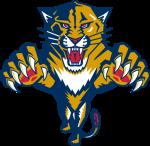 Florida Panthers, Florida Panthers