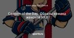 Cartoon of the Day. Образы команд женской НХЛ
