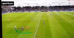 Шведский канал в прямом эфире разобрал тактику выбежавшего на поле фаната