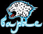 Sultan Beibarys, Sultan Beibarys